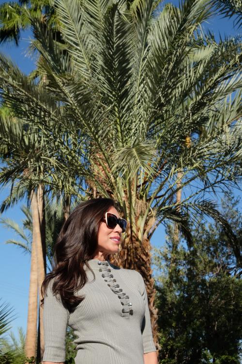 CArmenPalmTrees